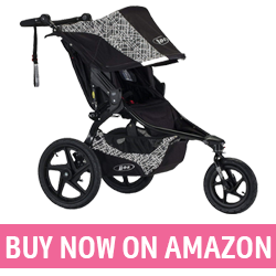 BOB Revolution Flex - Best Beach Stroller